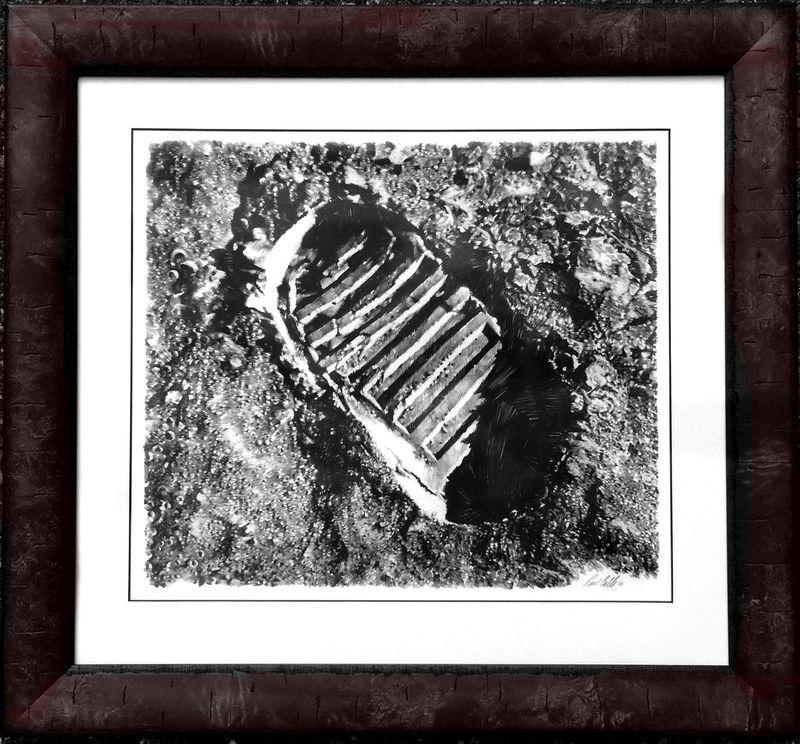 Calle 1st lunar foot print